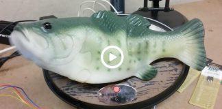 pez satanico