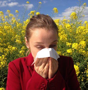 alérgicos